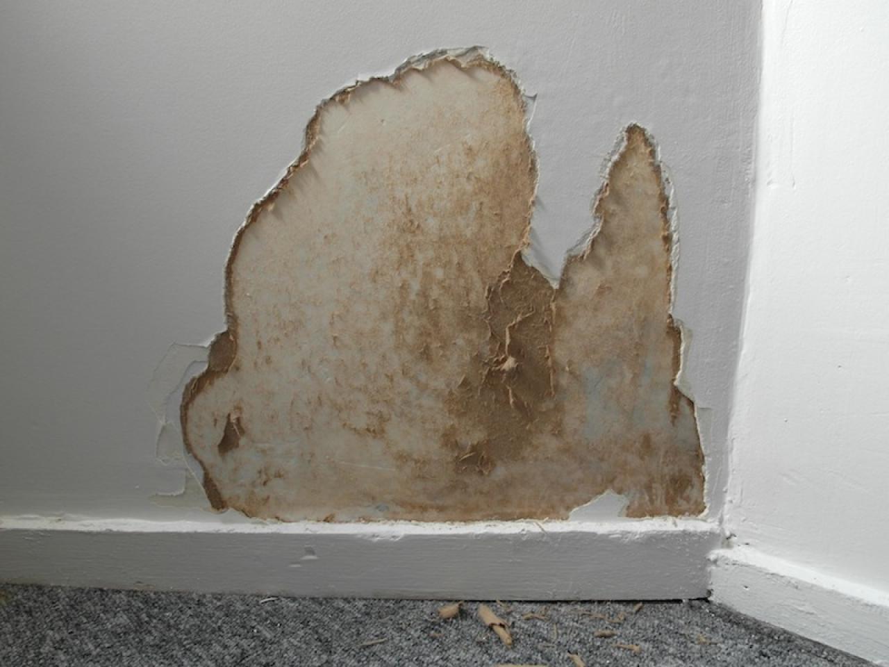 Comment r parer une fuite dans un mur baltic - Comment eliminer la poussiere dans une maison ...